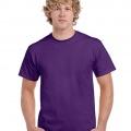 5000 Mens Basic T-shirt - Purple