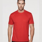1207 Mens Botany Tee - Worn